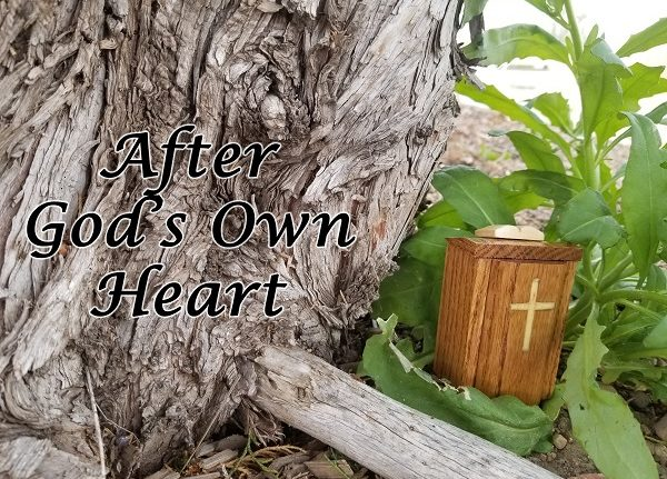 The Wandering Pulpit – After God's Own Heart